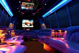 18 passenger party bus rental St Louis