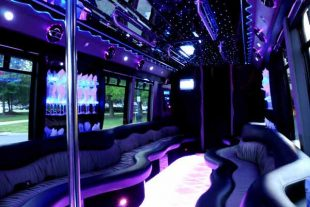 22 people party bus St Louis