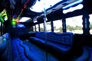 40 people party bus St Louis