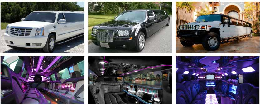 Wedding Transportation Party Bus Rental St Louis