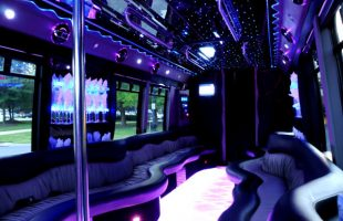 22-Seater-Party-Bus-St-Charles -MO