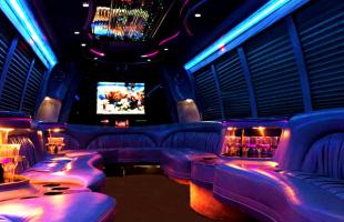 Edwardsville 18-Passenger-Party-Bus